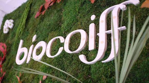 On a testé la coloration végétale chez Biocoiff' Nancy