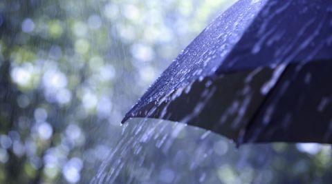 La météo du mercredi 7 août : averses orageuses au menu