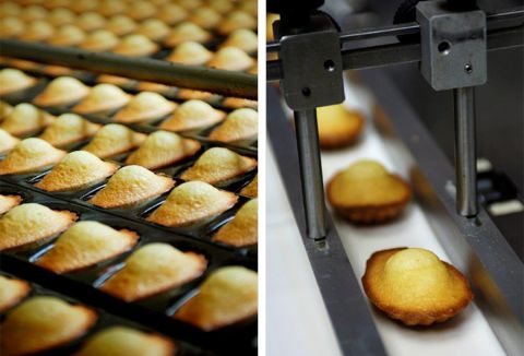 Madeleines de Commercy - DR